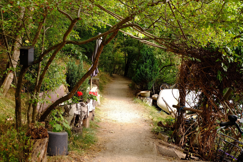 Gå deg vill på stiene som snirkler seg gjennom skogen. Christiania er ikke så stort, så du finner alltids hjem igjen :)